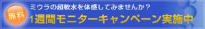 campaign_bnr