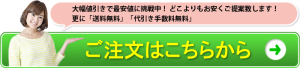bnr_gochumon_sf